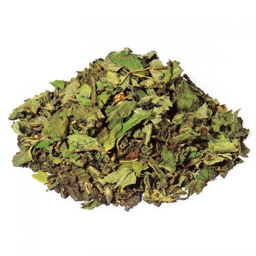 te-verde-gunpowder-cinese-biologico-Menta-Piperita-Premium.jpg